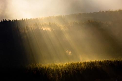 Фотограф Jakub Polomski (47 фото)