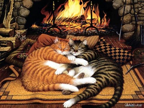Cat and mouse | Кошки и мышки (190 фото)
