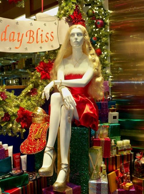 Рождественские витрины Нью-Йорка (2011) (119 фото)