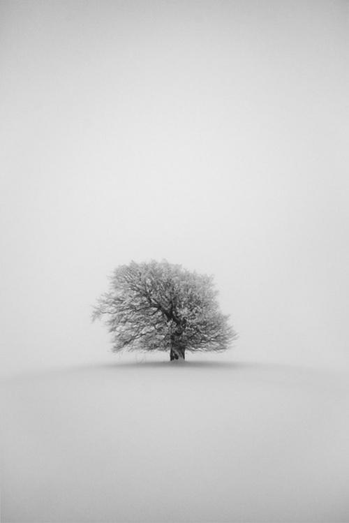 Фотограф Martin Gommel (129 фото)