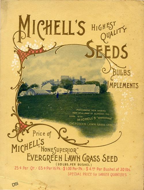 Seeds (400 фото)