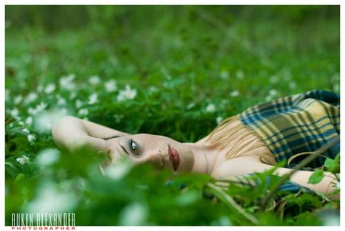 Фотограф Aukin Alexander (49 фото)