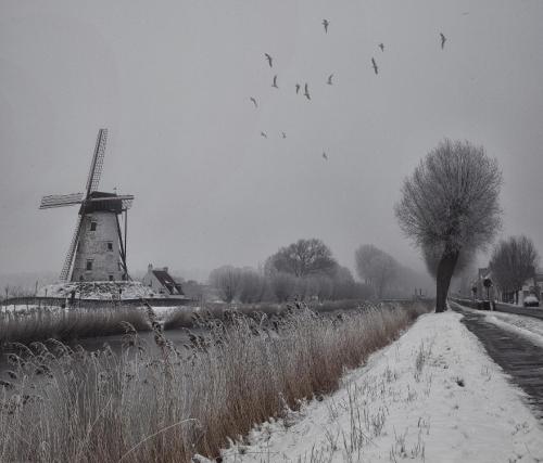Отличная фотоподборка. Landscape №18 (21 фото)