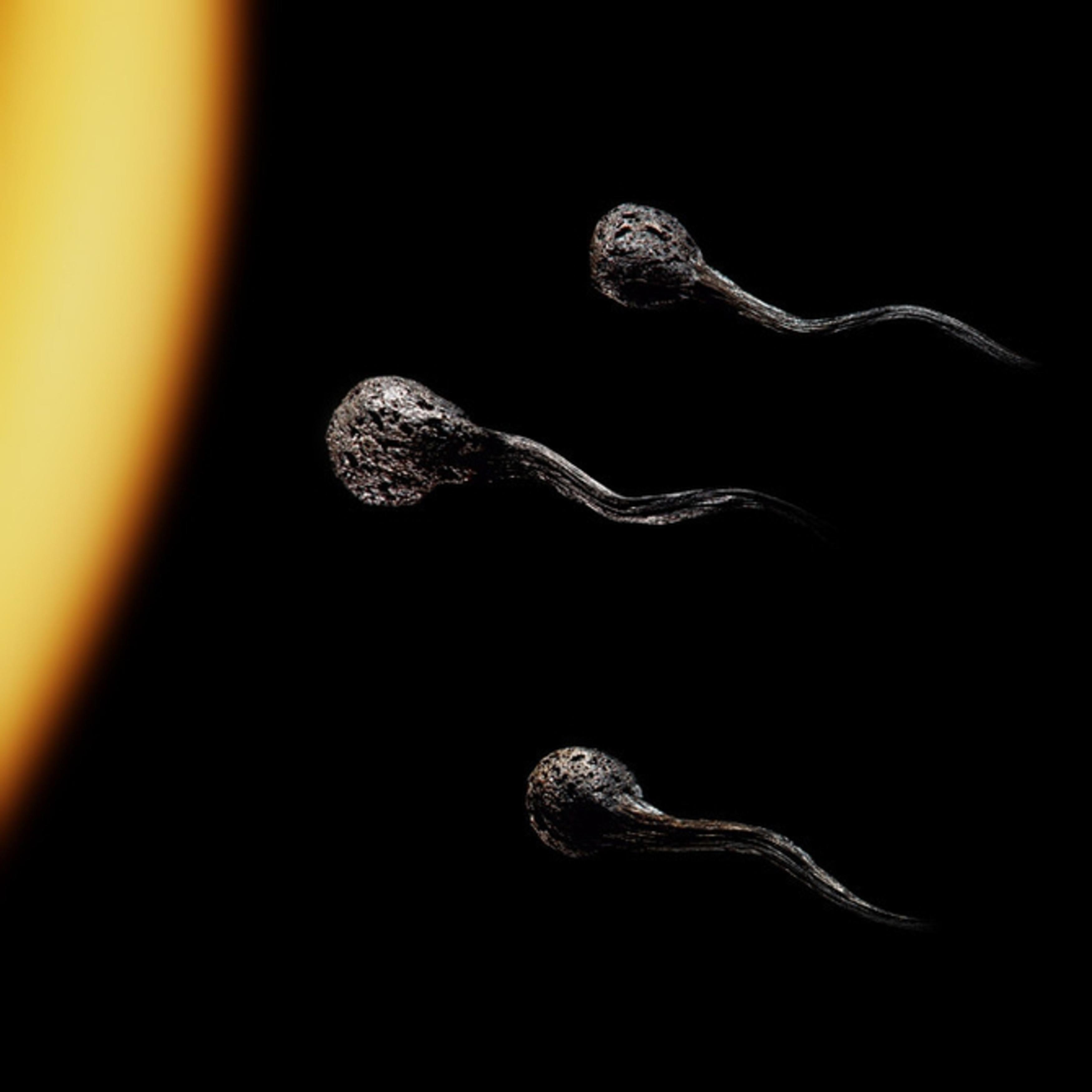 Сперма на сичках 2 фотография