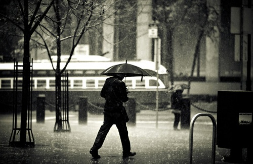 Фотограф Navid Baraty (113 фото)