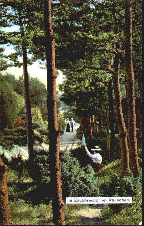 """Старые открытки """" Кенигсберг"""" и """"Раушен"""" (185 фото)"""