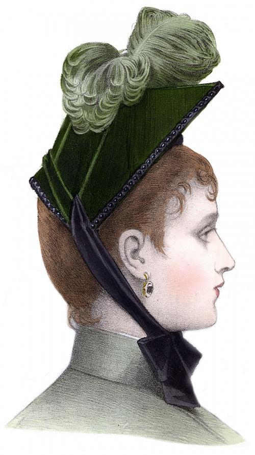 Модели шляп, головных уборов и украшений 1889 года (19 фото)