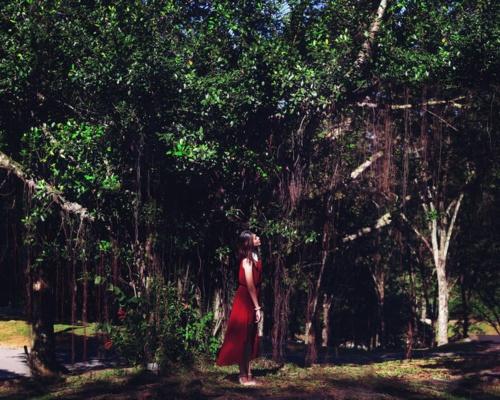 Daphne Ng (91 фото)