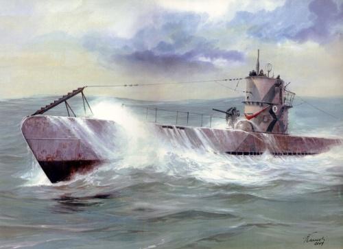 Боевые корабли мира (21 фото)