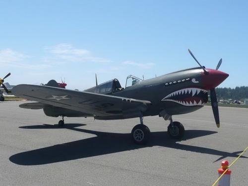 Фотообзор - американский истребитель Curtiss P-40E-CU Warhawk (51 фото)
