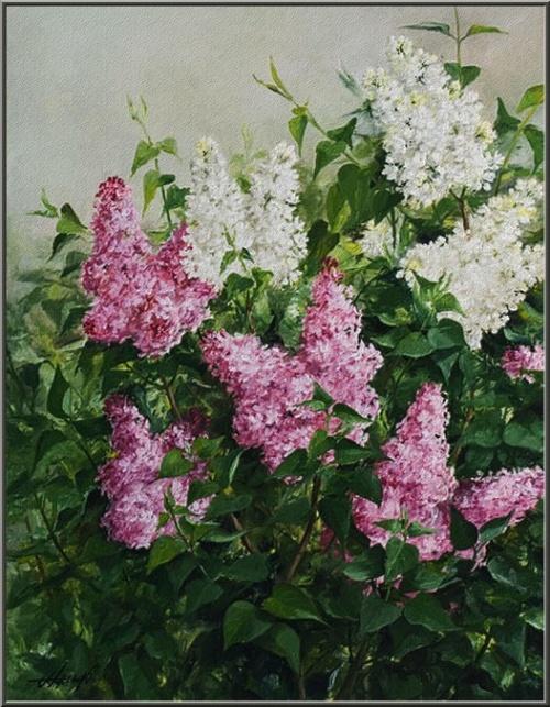 Сирень в изобразительном искусстве (125 фото)