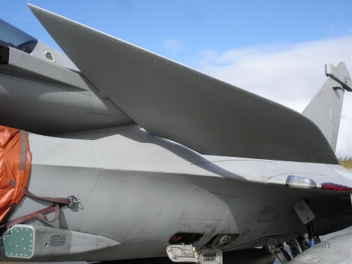 Фотобзор - французский истребитель Rafale M (109 фото)