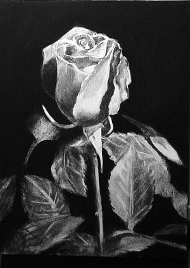 Art. Charcoal №1 (37 фото)