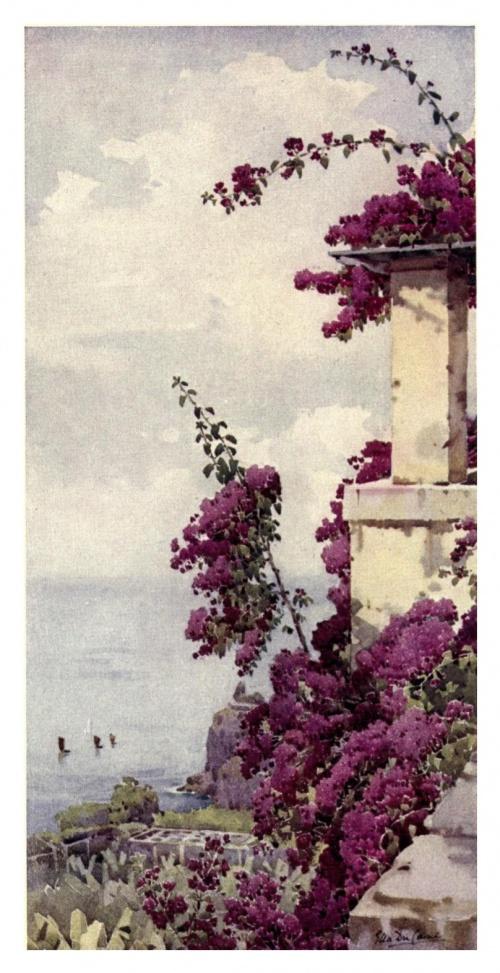 Экзотические пейзажи Ella Du Cane (211 фото)