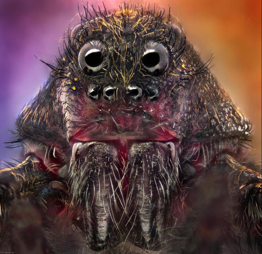 три пауки мутанты картинки также пишет