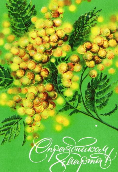 Фото открыток с мимозами