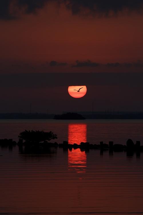 Мир в Фотографии - World In Photo 800 (100 фото)