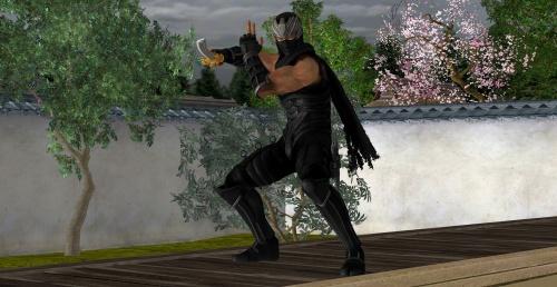Сборник картинок из игры ''Dead Or Alive 5'' (256 фото)
