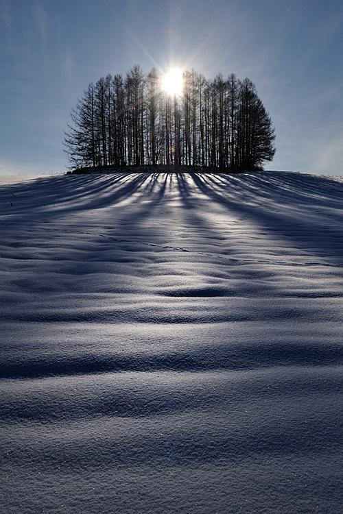 Мир в Фотографии - World In Photo 797 (61 фото)