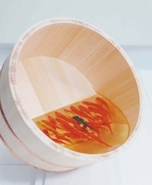 Японский художник Рюске Факахойри (Riusuke Fukahori) (118 фото)