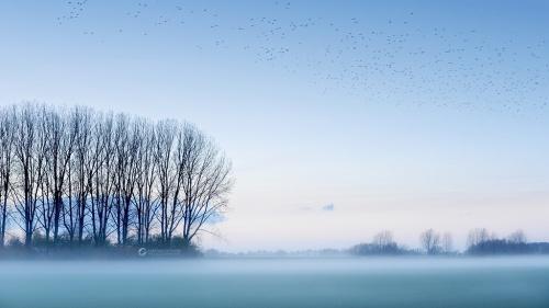Новые работы фотографа Lars van de Goor (38 фото)