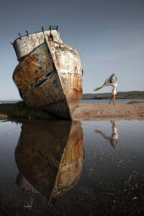 Фотограф Alex Lim (78 фото)