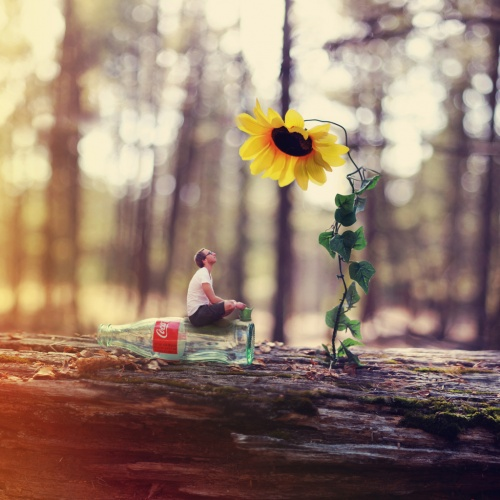 Artworks by photographer Joel Robison (131 работ)