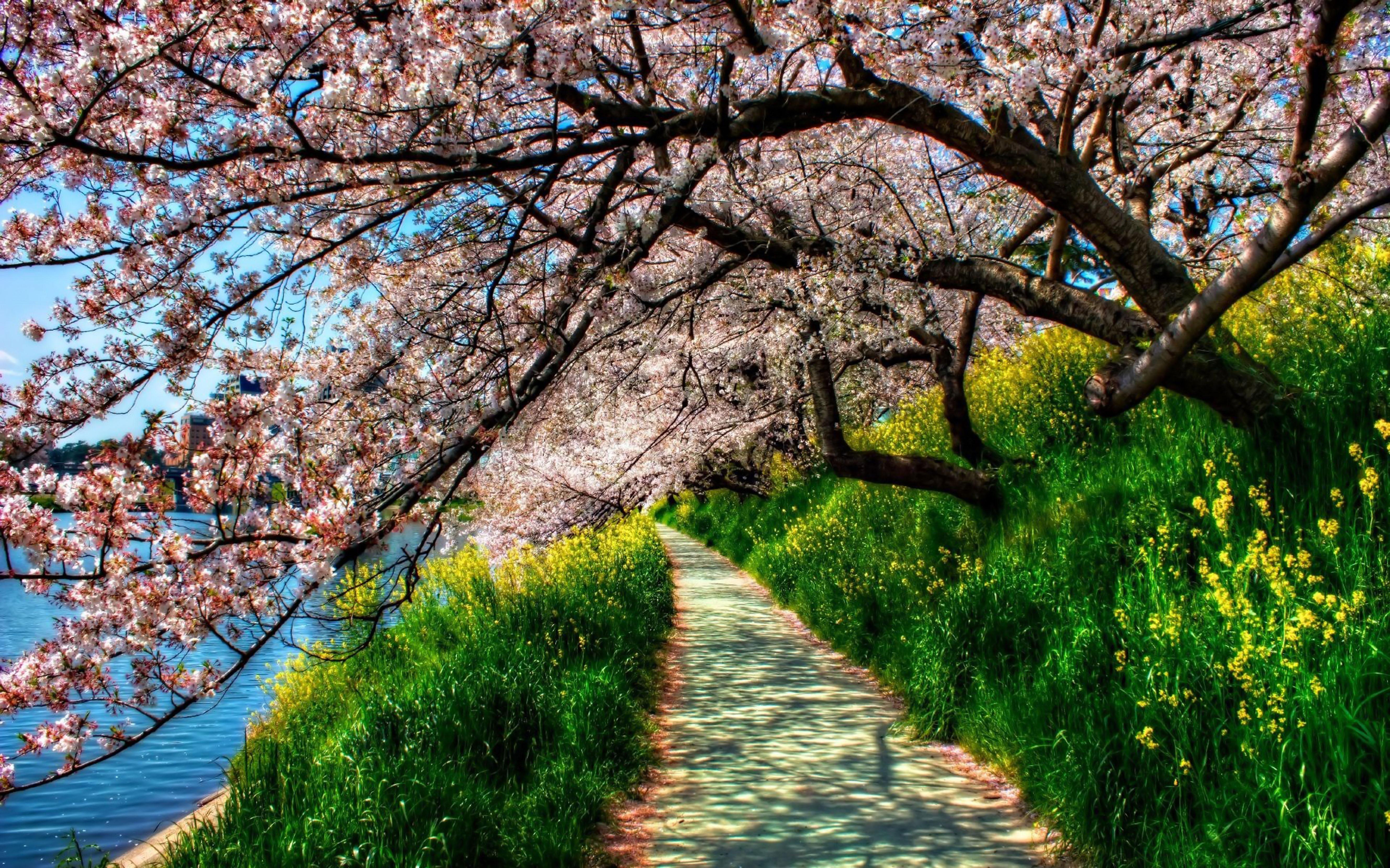 Картинки весенние природа