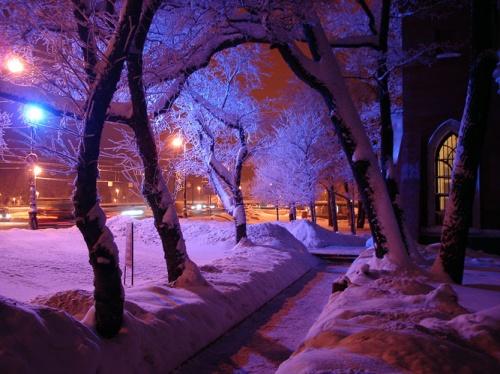 Фотографии (февраль 2013)   Photography (February 2013) (73 фото)