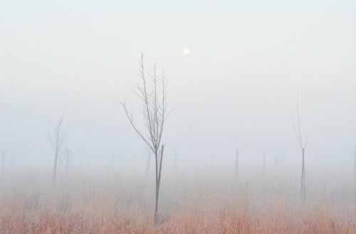 Пейзажи №4 (41 фото)