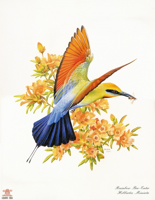 Beautiful Australian Birds - Calendar 2004 (15 работ)