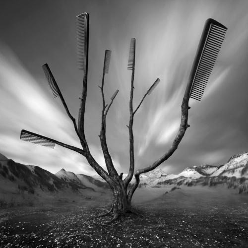 Photoworks by Dariusz Klimczak (137 фото)