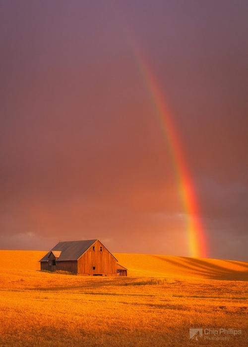 Фотограф Chip Phillips Фотограф Chip Phillips (143 фото)