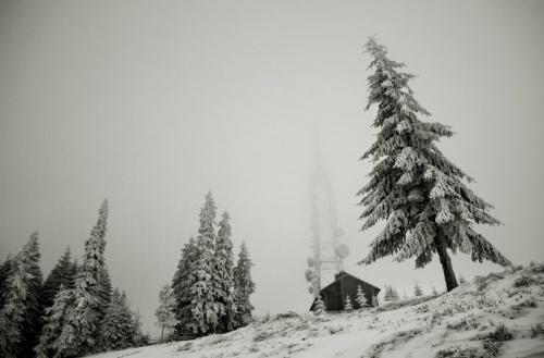Пейзажи Adrian Petrisor (100 фото)
