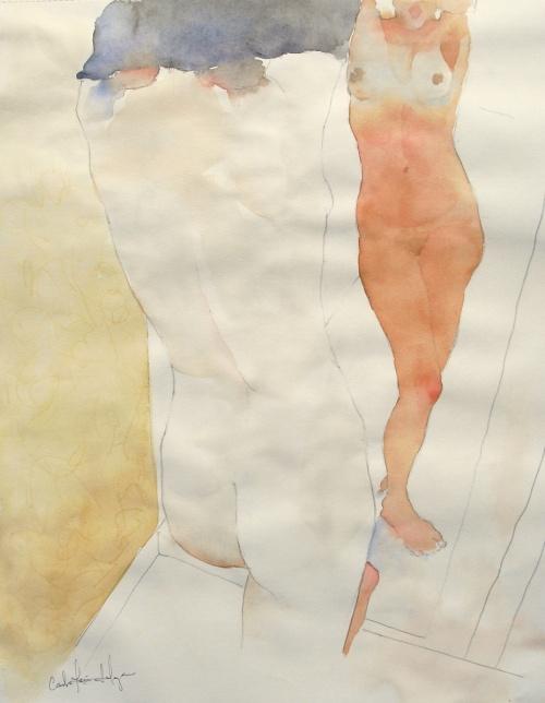 Акварельные работы Carlos Leon Salazar (105 фото)