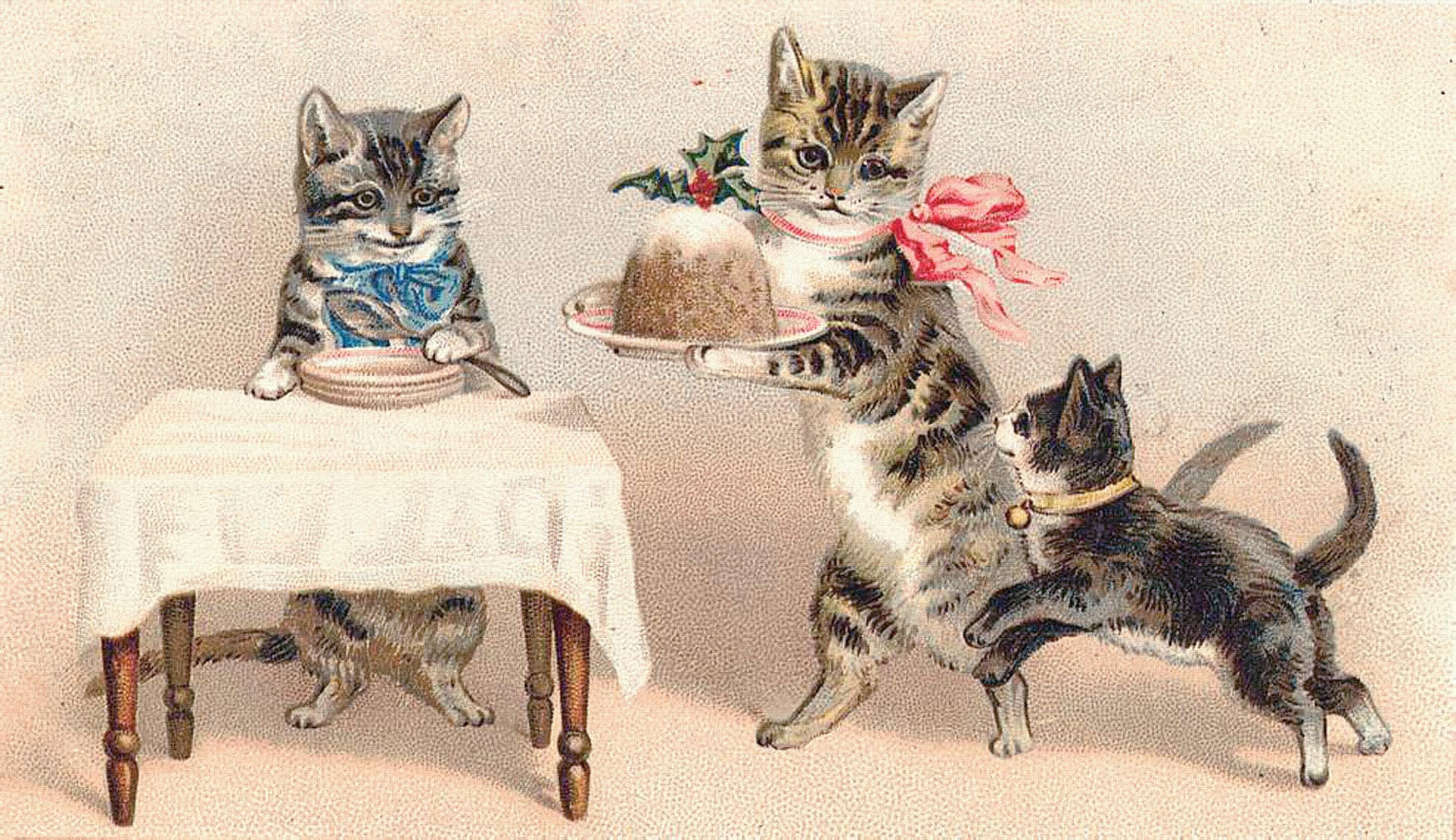 Открытки старые с котами