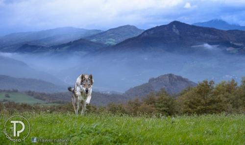 Мир в Фотографии - World In Photo 765 (120 фото)