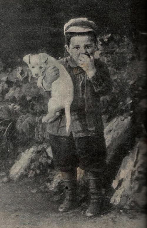 Бодаревский Николай Корнилович (1850-1921) (83 работ)