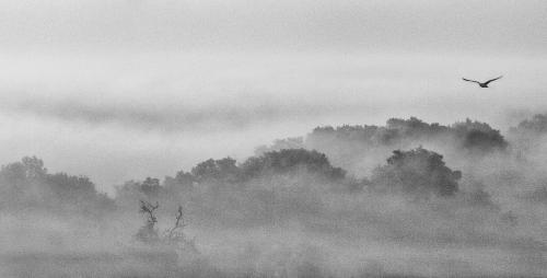Отличная фотоподборка. Landscape №24 (21 фото)