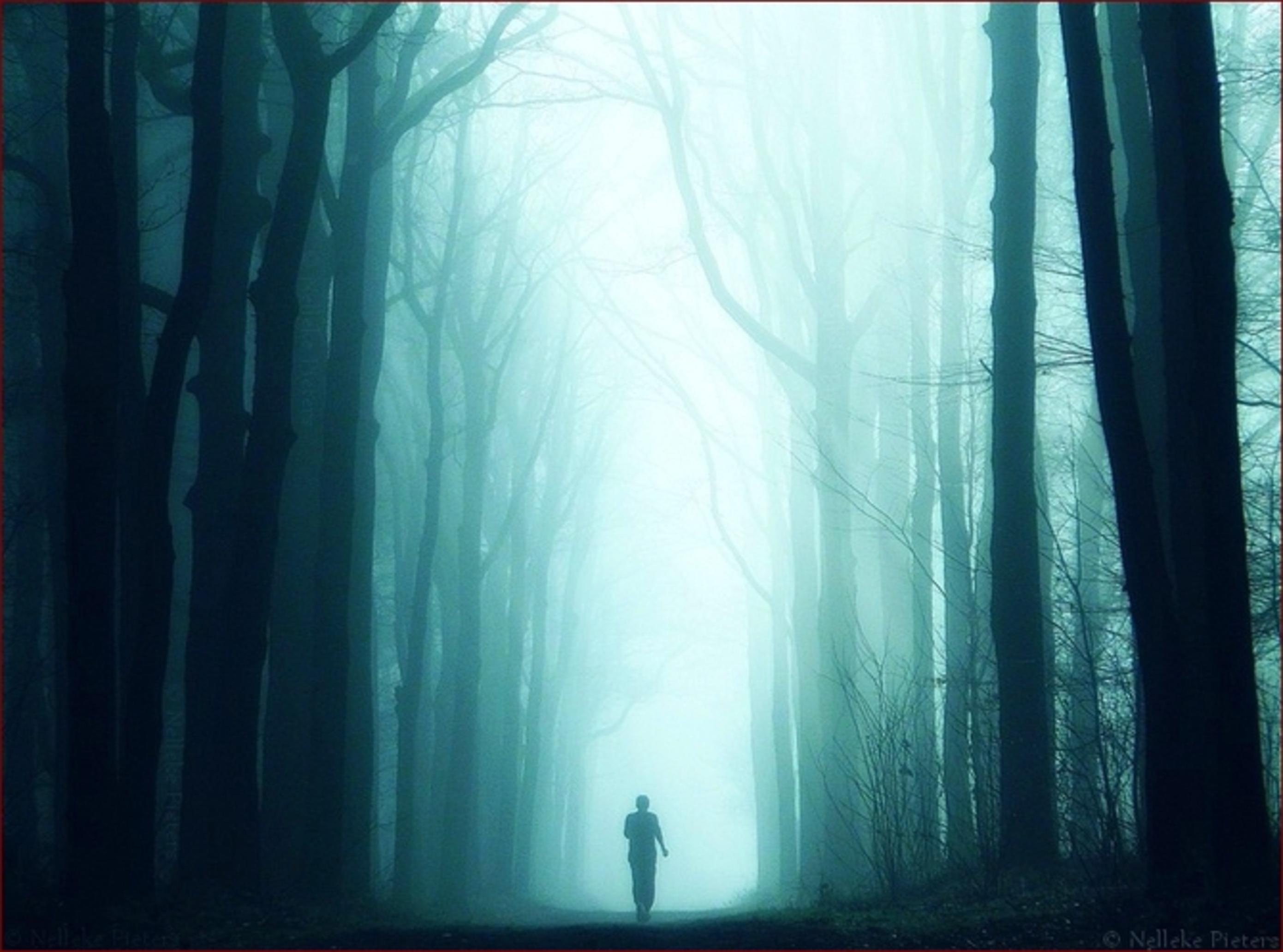 Прохожую в лесу 15 фотография