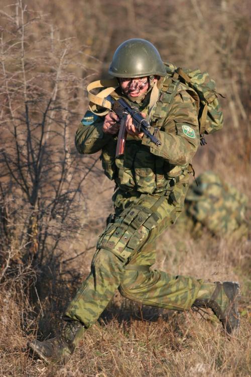 7-я десантно-штурмовая дивизия (19 фото)
