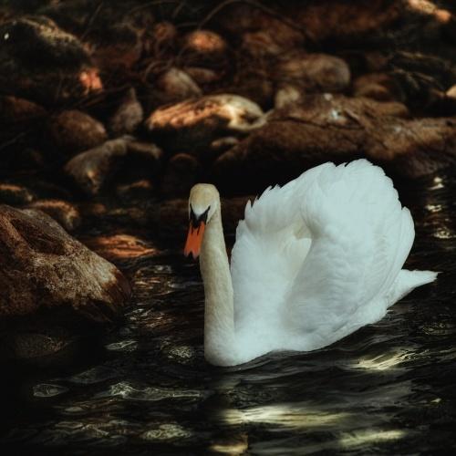 Мир в Фотографии - World In Photo 821 (62 фото)