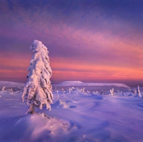 Русский пейзаж. Победители 2011. Категория Классический пейзаж (35 фото)