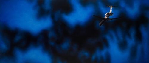 Гиперреалист Damian Loeb (64 фото)