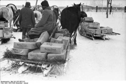 Military Photos of German Journalists Since World War II (2486 обоев)