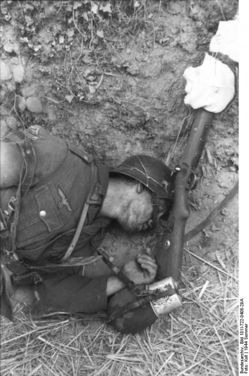 найти деда вороневский вторая мировая война квартир