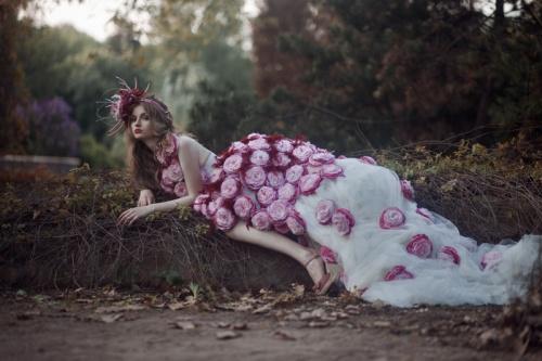 Фотограф Екатерина Белинская (41 обоев)