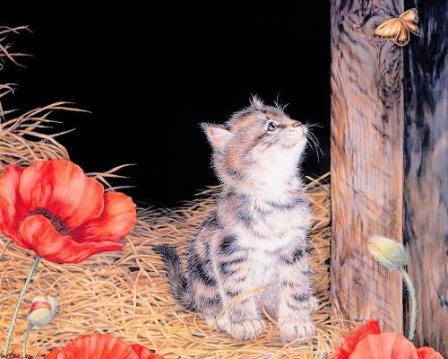 Художник-иллюстратор Jane Maday (69 обоев)