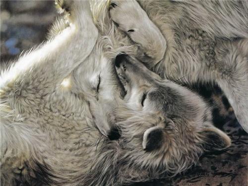 Картины Лесли Харрисон (31 фото)