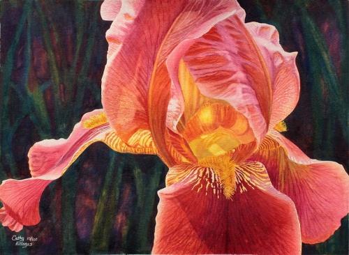 Работы художницы Cathy Hillegas. Акварель (55 фото)